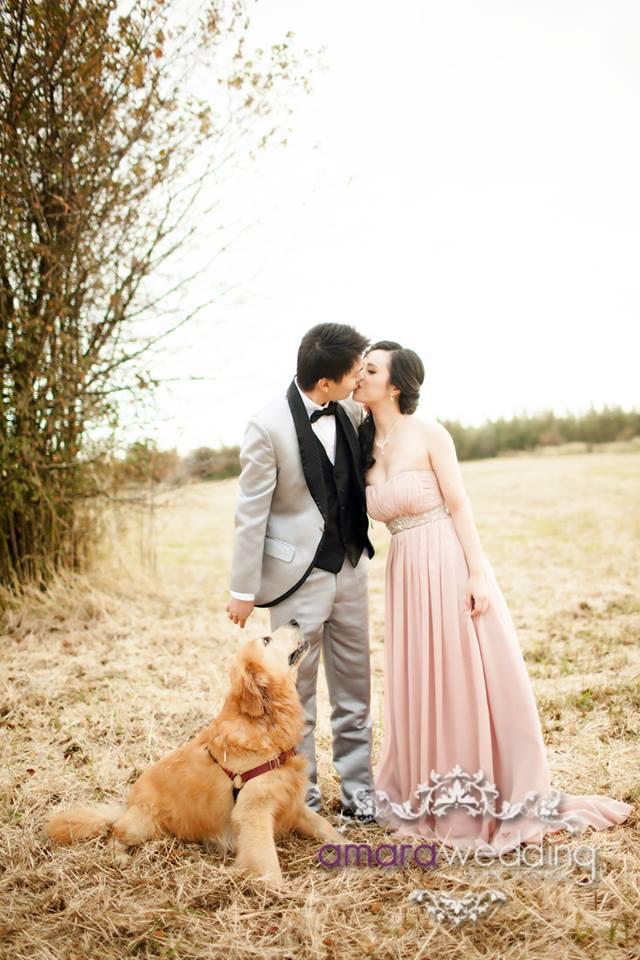 Pre Wedding Photo Shoot 2013-2014